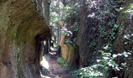Parco Naturale Regionale Marturanum